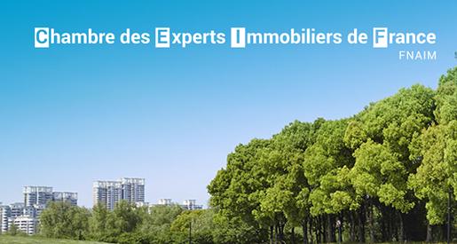 Economie r union r gionale chambre des experts - Chambre des experts immobiliers de france ...